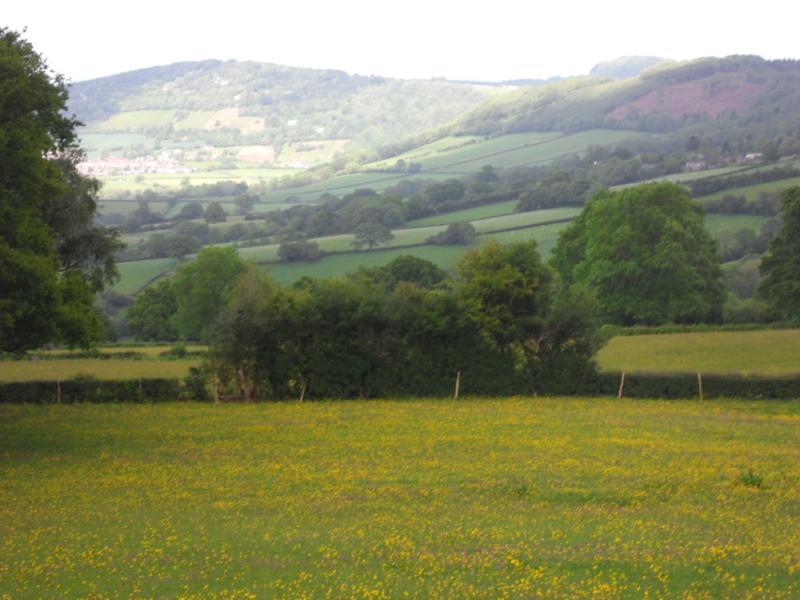 Views from Little Wern Farm, Perfect Spot for Bird Watchers.