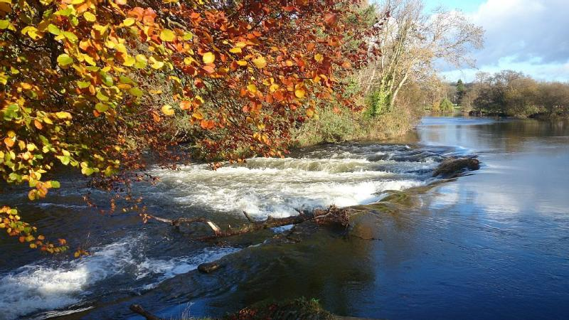 Beautiful River Teifi in Autumn