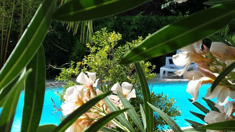 Pavillon avec jardin piscine privé, location de vacances à Corse-du-Sud