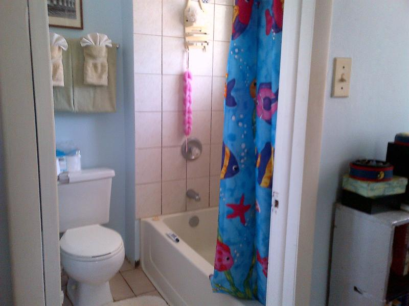 One of the two bathrooms