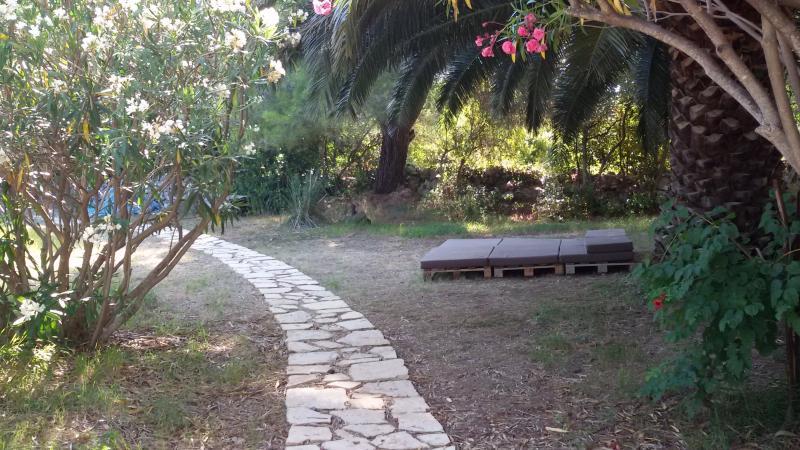 Câmara de bronzeamento em palmeira de sombra embaixo