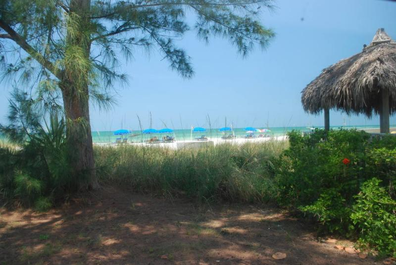 VIEW OF BEACH FROM EVERY ROOM!  Tiki/hut Picnic table available to watch sunsets