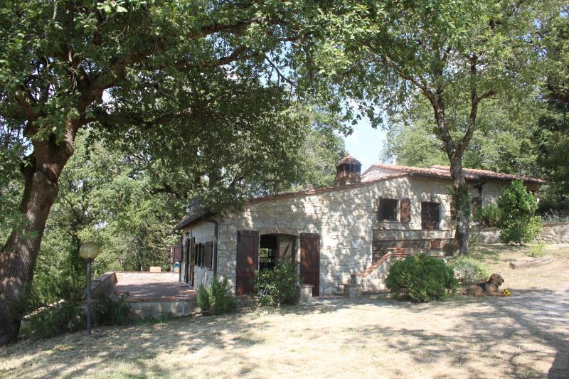 Tuscany House 'La Querce Sola', holiday rental in Radda in Chianti