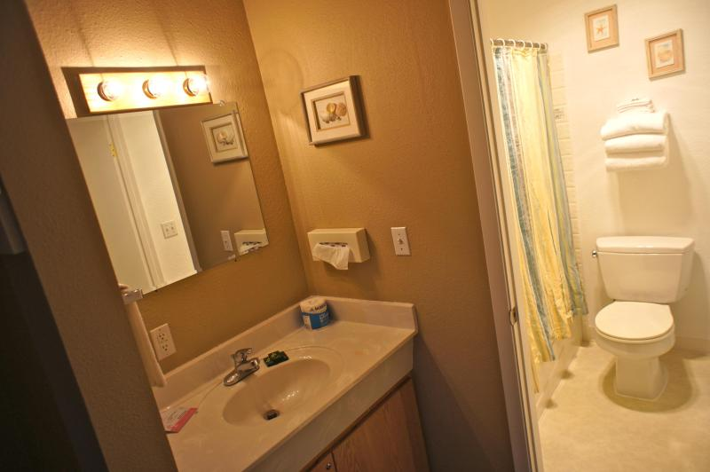 A second bathroom connected to the bedroom