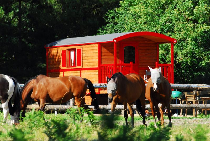 Gypsy Nature B&B, vacation rental in Fontaine-Guerin