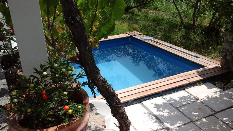 Pool  3.5 x 3.5