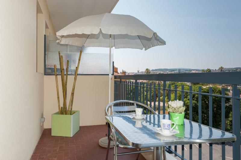 BASSE CALIFORNIE, holiday rental in Cannes