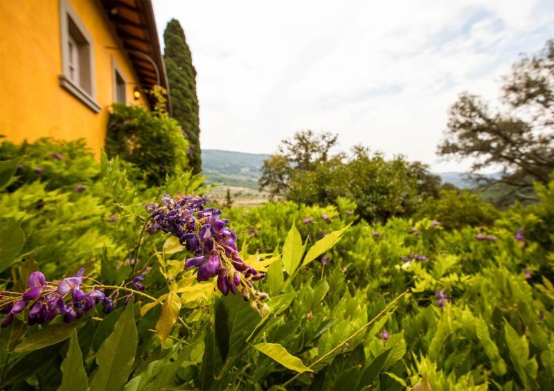 Charming Country Bed and Breakfast Close to Floren, holiday rental in Pratolino