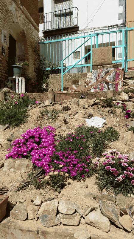 Flores tapizantes, ya falta poco para cubrir todo el terraplén