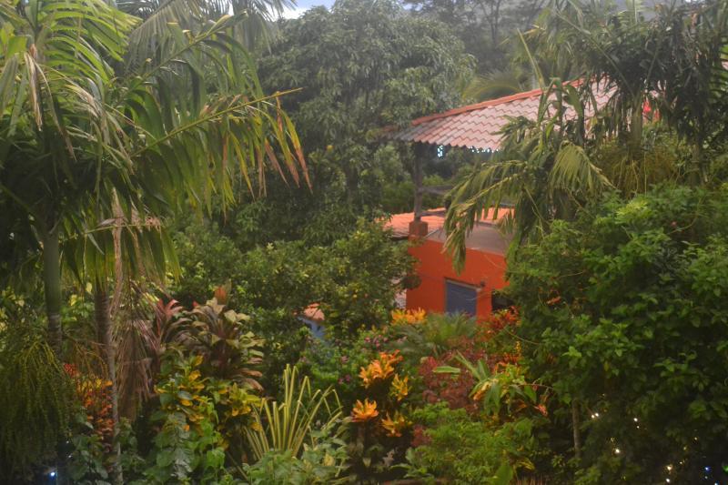 Apartment set into Eden Atenas gardens