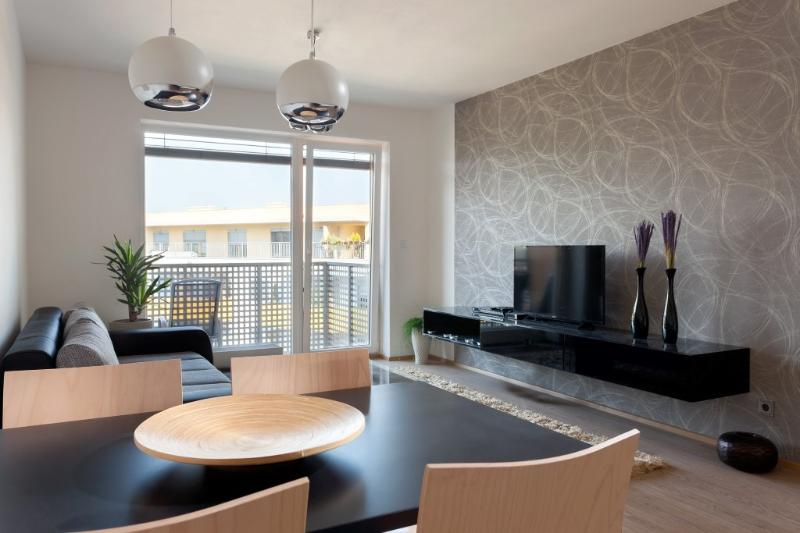 BRNO IVF FRIENDLY APARTMENT, location de vacances à Moravie du Sud