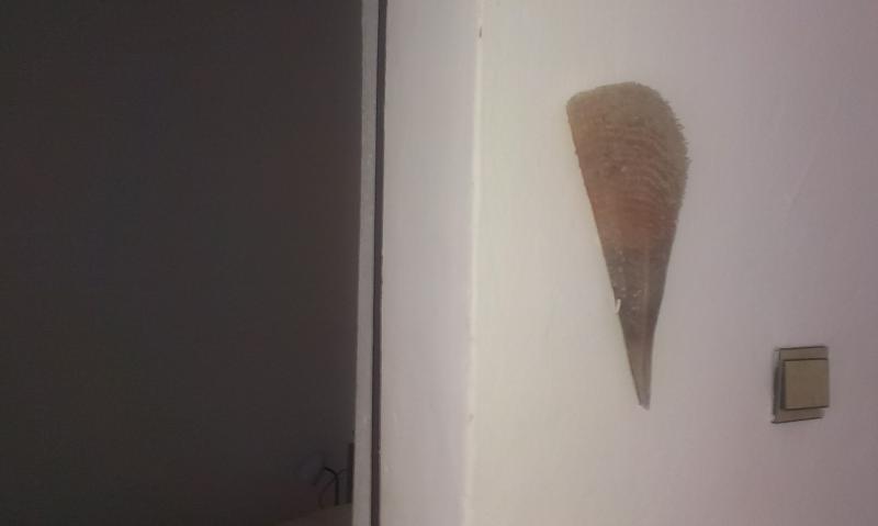 Prisnac :: apartment Ana, location de vacances à Pakostane