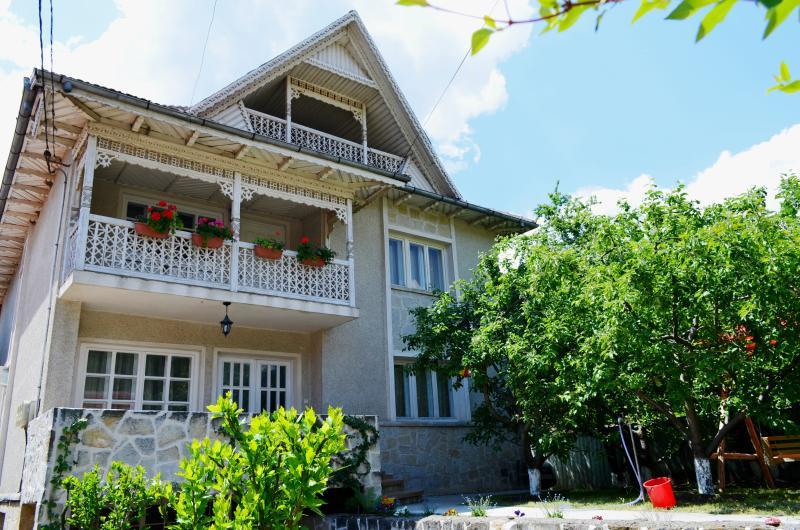 Trotus Villa, holiday rental in Bacau County