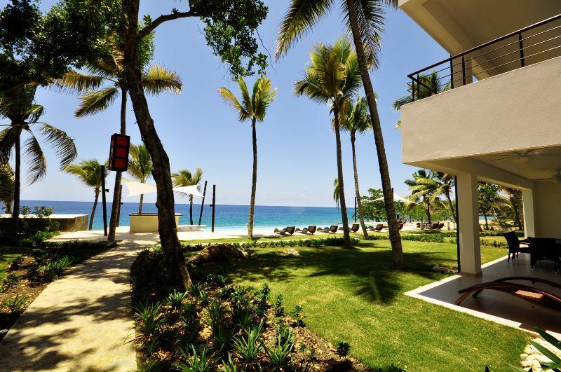 Palm arbres pour les jours!