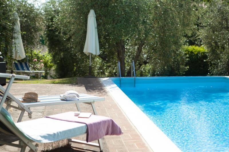 piscina panoramica sul giardino di ulivi