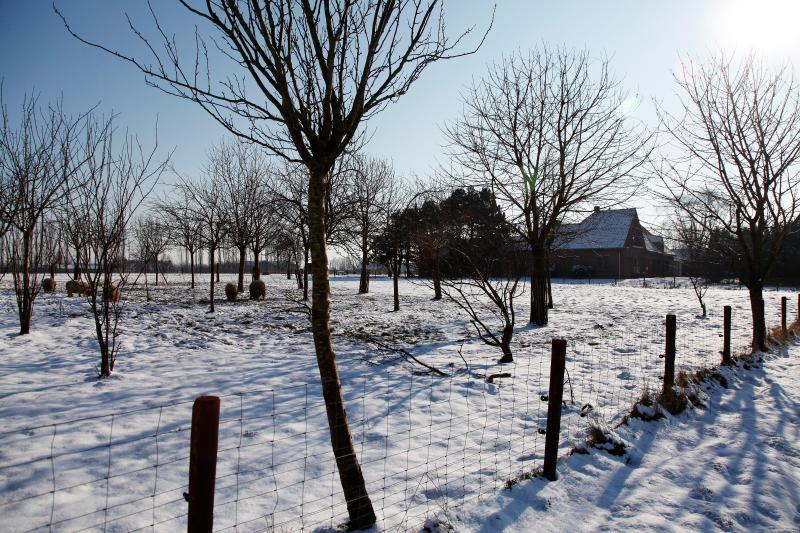 De Sneppelhoeve Vakantieappartement, vacation rental in Antwerp Province