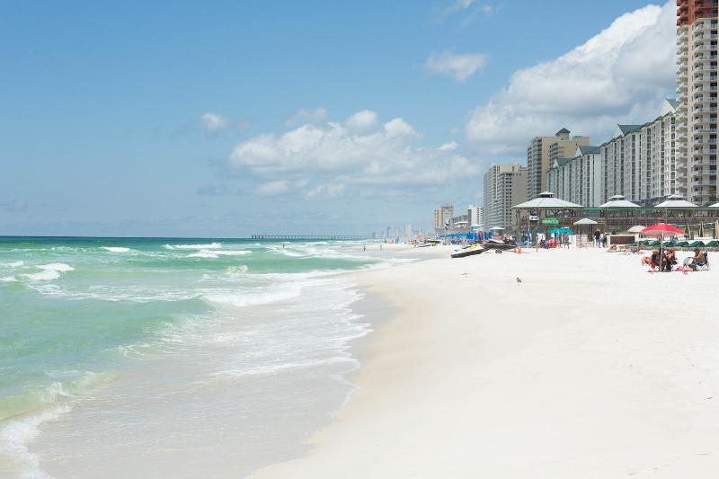 Long Walks  at the Beach Await