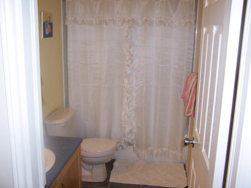 lower level bathroom with tub-shower