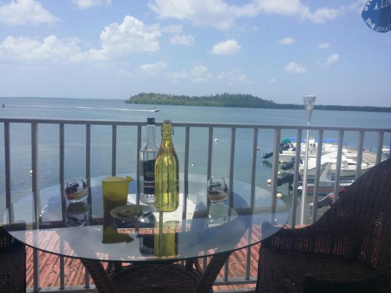 Nice studio with sea view & terrace, holiday rental in Morne-A-l'Eau