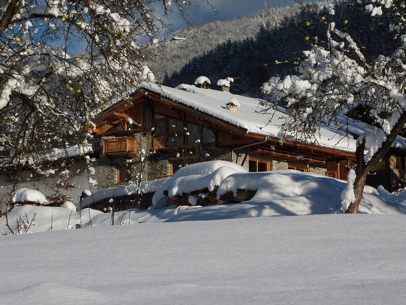 NATURE SKI LODGE STERWEN catered possible free shuttle to funicular ARC1600, holiday rental in Peisey-Vallandry