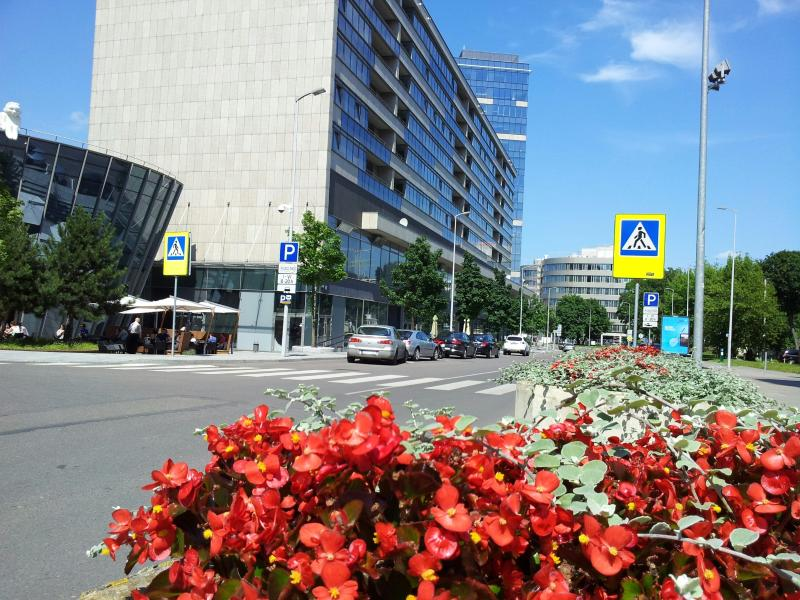 Exclusive Apartment in Vilnius Centre, holiday rental in Paberze