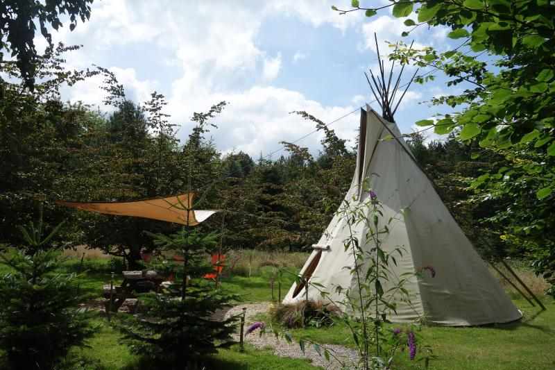TIPI Parrotia 5 PLACES