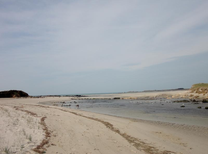 sandy beach nearby. ( low tide )