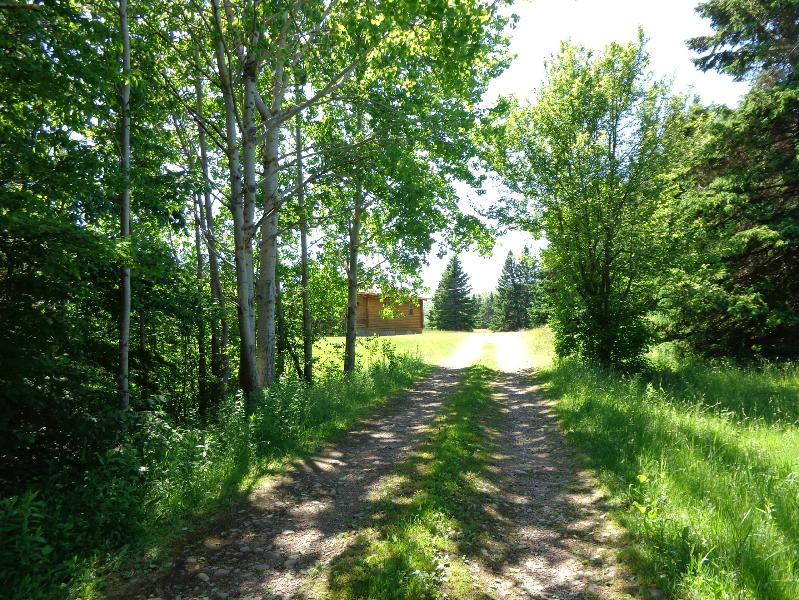 single cottage 3, vacation rental in Margaree Valley