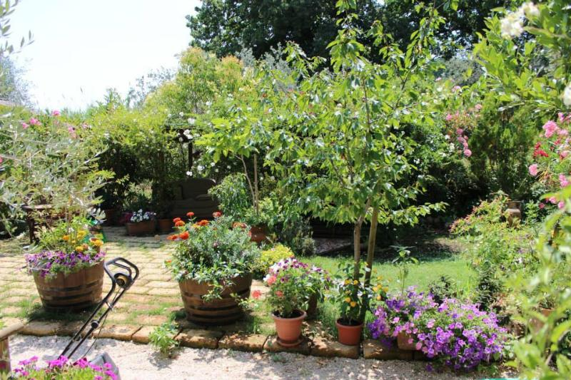 Umbrian Casette Countryhouse, holiday rental in Amelia