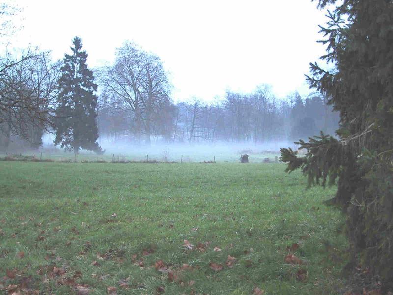 o parque e o lago visto da sua 'Tours' no outono