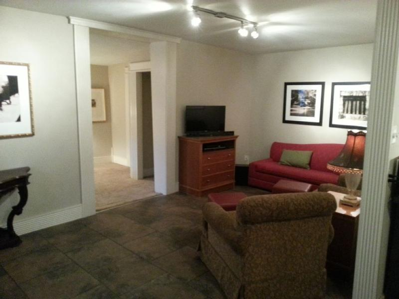 1BR Near Downtown 1920'S Era, Renovated Pets OK, holiday rental in San Antonio