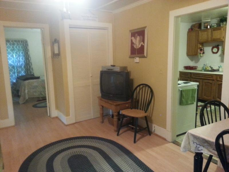 3 BR apartment, walking distance to Mass MoCa, vacation rental in Petersburg