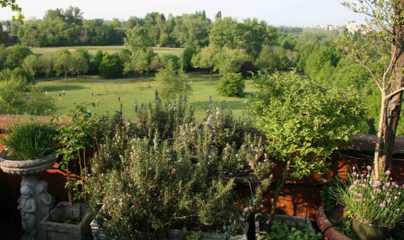 Milan: a Greenhome in a park, vacation rental in Brusuglio