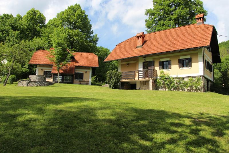 Country house 1 near Ljubljana, holiday rental in Lower Carniola Region