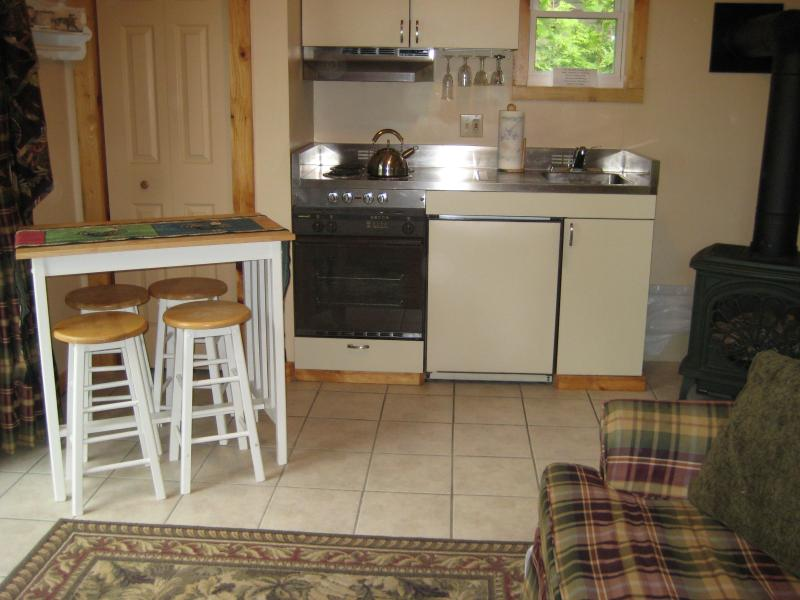 Kitchen Area; stove with oven, small fridge, dining area