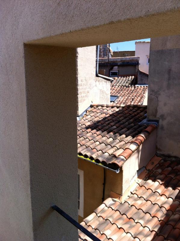Vue de la terrace tropezienne sur les toits/ View of the Avignon rooftops from the terrace