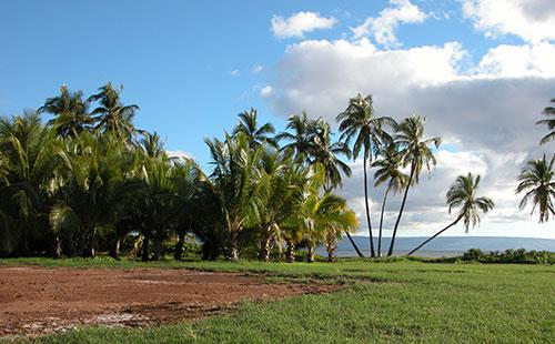 One Alii Park in Kaunakakai