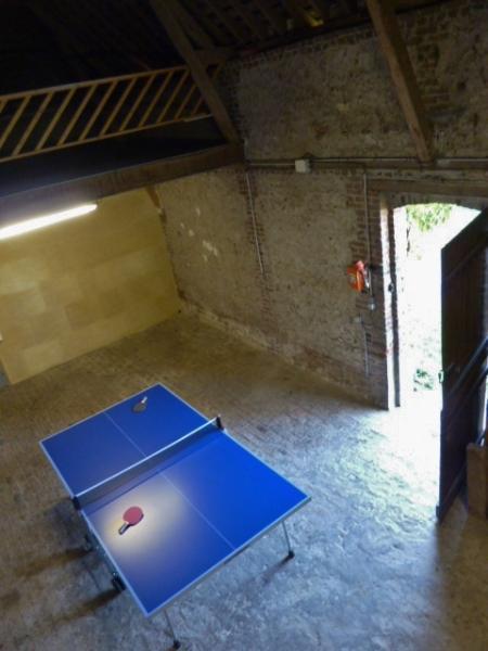 free table tennis