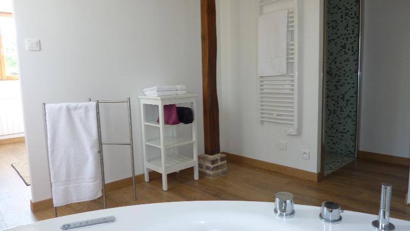 master bathroom - groundfloor 2