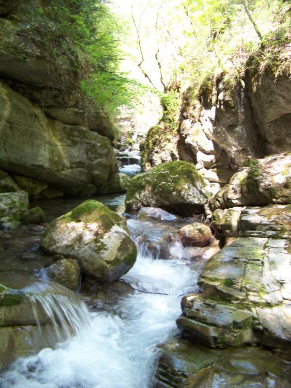 torrente Ambiez