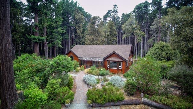Whispering Ferns, vacation rental in Mendocino County