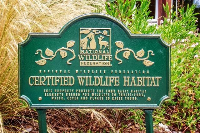 Whispering Ferns is a Certified Wildlife Habitat.