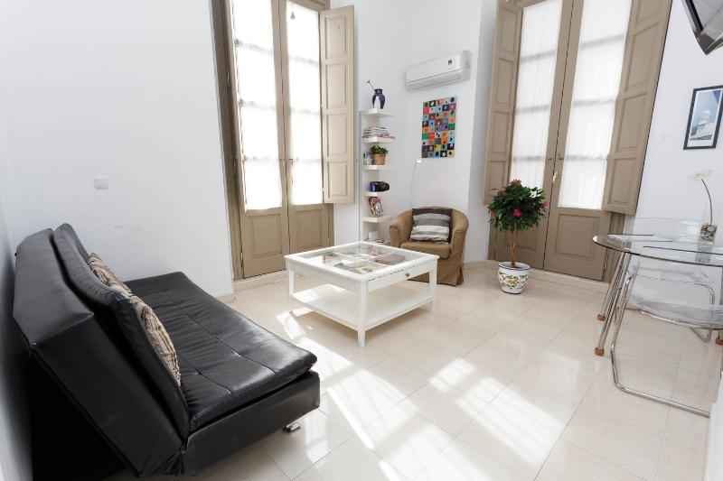 Bright Apartment-Historic Cent, holiday rental in Malaga