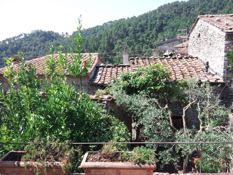 Casa sulle colline lucchesi