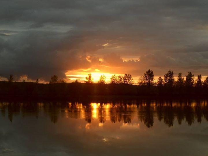 Sunset planet carp