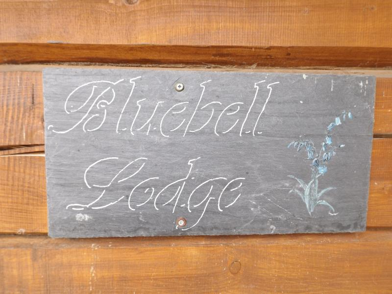 Bluebell Lodge at Avonvale gites
