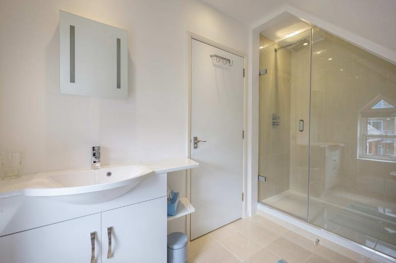 Large walk in shower, basin and wc