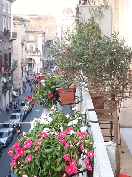 VISTA ESTERNA DEL DUOMO. CATTEDRALE vista dal balcone.