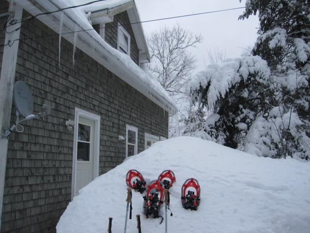 Snowshoeing anyone?! Two pairs included
