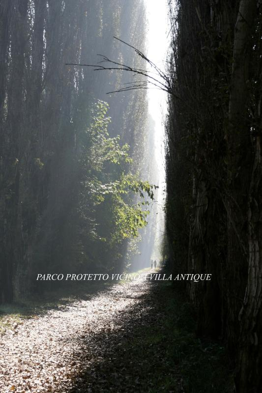 Parque natural protegido cerca de Villa antigua